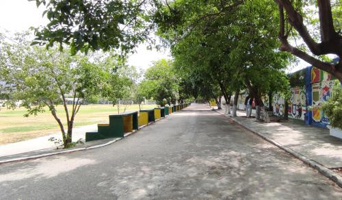12 Cancha Colegio SLB
