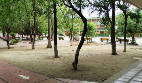 16 Colegio SLB